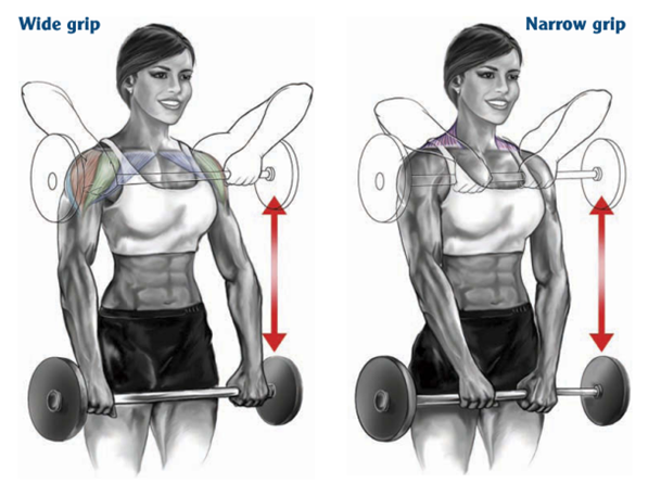 Barbell Upright Row hand spacing