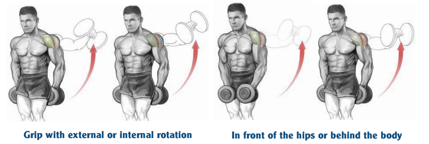 Grip with external or internal rotation in front of the hips or behind the body
