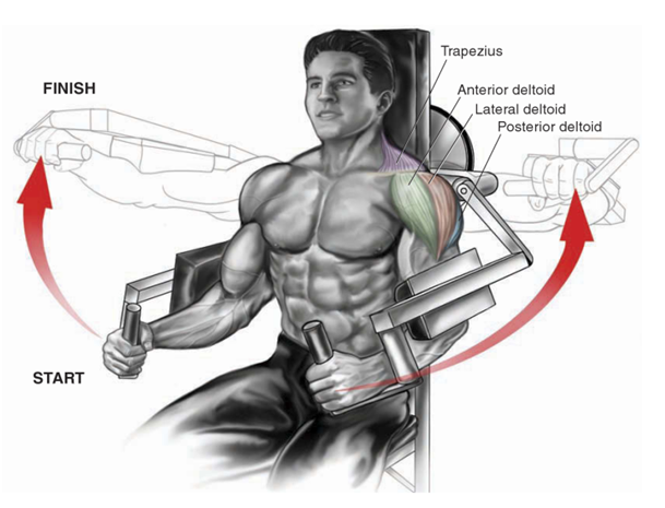 Machine Lateral Raise