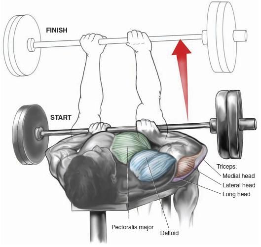 close- grip bench press