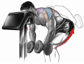 head-supported dumbbell raise