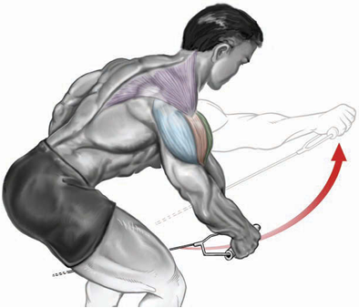 one-arm bent-over cable raise