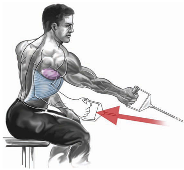 one-arm seated cable row