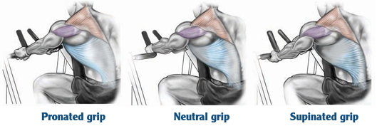 pronated nautral supinated grip