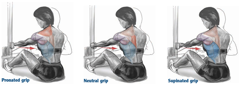 pronated neutral supinated grip