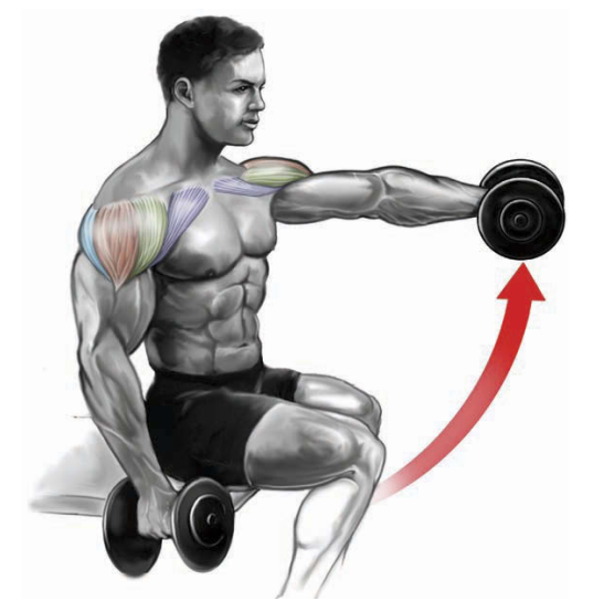 variable-grip dumbbell front raise