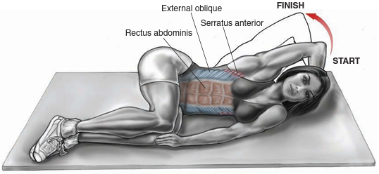 Oblique Crunch