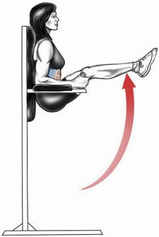 Vertical Leg Raise