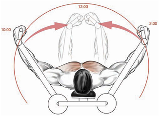 partial reps target the inner pectorals