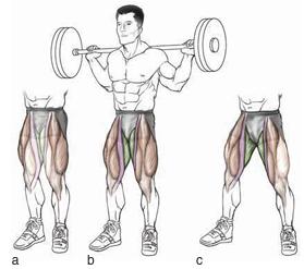 stance widths